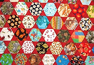I Spy Quilt in Red Twin Size for Boys or Girls