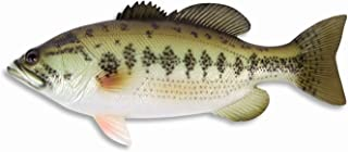 LX Handpainted Large Mouth Bass Wall Mount Decor Plaque Game Fish Replica 18