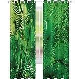 Cortinas opacas para niños, plantas en el medio ambiente tropical exótica selva atmósfera natural belleza patrón, ancho 52 x largo 84 cortinas opacas para ventana/cortinas, verde