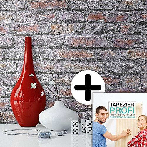 Steintapete in Grau Rot Braun , schöne edle Tapete im Design einer Steinmauer , moderne 3D Optik für Wohnzimmer, Schlafzimmer, Flur oder Küche , inklusive der Newroom Tapezier Profi Broschüre, mit allen Hilfen, Tricks und Tipps, die Sie zum perfekten Tapezieren brauchen!