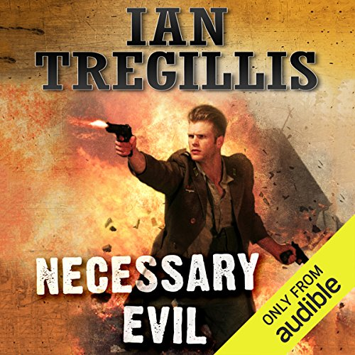 Necessary Evil audiobook cover art