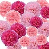 Ofoen 27 Stück Blumen Pompoms,Seidenpapier Blumen Ball Dekorpapier Kit