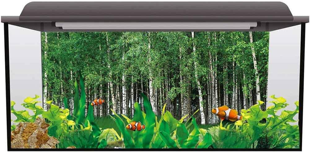 bybyhome Aquarium Fish Tank Background Poster Forest,Sunny Forest Blossoms 3D Underwater World Backdrop Aquarium