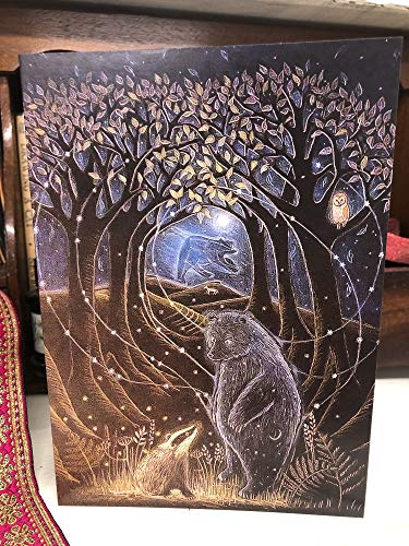 Biglietto Di Auguri Dell'Artista Hannah Willow Con Orso E Tasso Sotto L'Orsa Maggiore, Ideale Come Biglietto Di Compleanno, Biglietto Artistico