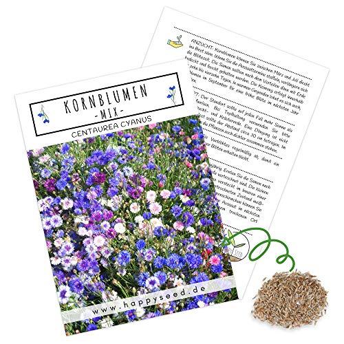Kornblumen Samen (Centaurea cyanus) - Wunderschön leuchtende Blumen mit langer Blütezeit für eine bunte Blumenwiese (Mix, 1000 Korn, 80 cm)
