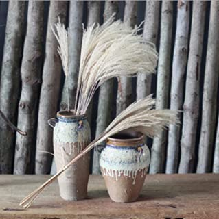 CoCocina 1 Bouquet 8 Heads Beautiful Home Decoration Dried Flowers Wild Pampas Small Reed Flower Artificial Flowers