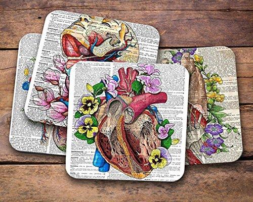 Anatomy Dictionary Medical Coaster Set, Gift for Medical Student, Nursing School Medical College Gift Set, Anatomy Art Print Coasters