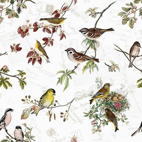 20 Servietten Heimische Vogelarten/Vögel/Tiere/Tiermotiv/Frühling 33x33cm