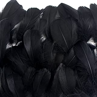 Best black feathers bulk Reviews