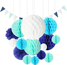 Party Supplies Paper Fans Pom Poms Honeycomb Ball Paper Flower Balls for Decoration for Christmas Birthday Wedding Baby Shower (Blue and White)