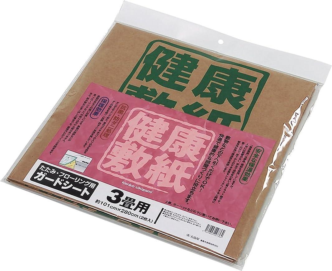 ゆでる不定世界大島屋 敷紙 健康敷紙 3帖 2枚入 1枚あたり 約101×280cm