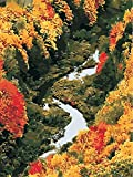 Pintura al óleo por número paisaje otoñal Kits pintados a mano dibujo lienzo cuadros para colorear pintura decoración del hogar A6 40x50cm