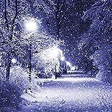zqyjhkou 5D-DIY-Diamond Painting Snow Street Light Kit de Bordado de Diamantes Rhinestone Set Diamond Mosaic Needlework Handmade/40x50cm(Sin Marco) Diamante Redondo