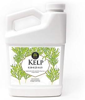 Age Old Kelp, 32 oz