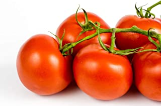 Ace 55 Heirloom Tomato Seeds, 150+ Premium Heirloom Seeds, Delicious Flavor! Top Seller, Lycopersicon esculentum, (Isla's Garden Seeds), Non GMO, 90% Germination, Highest Quality
