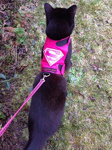 Mynwood Cat Jacke /Geschirre Supergirl Erwachsene Katze Ausbruchsicher
