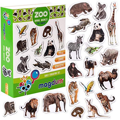 magdum Foto Zoo Tiermagnete für Kinder - echte GROßE Kühlschrank Magnete für Kleinkinder- magnetisches Theater Lernspielzeug – Spiele für 3 Jährige – Magnet Spiele für Kinder - Dschungeltier-Magnete
