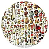 Yingxin34 Rompecabezas de 1000 Piezas - Setas ~ Rompecabezas de champiñones Rompecabezas Circular