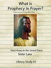 What is Prophecy in Prayer?: Living Life Beyond the Veil