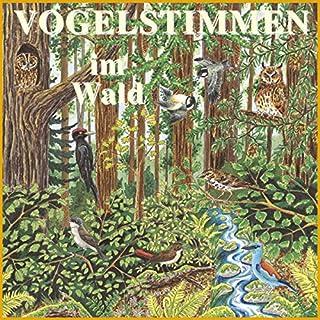 Vogelstimmen im Wald Titelbild