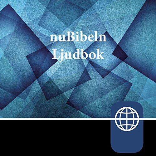 nuBibeln, Audio Download audiobook cover art