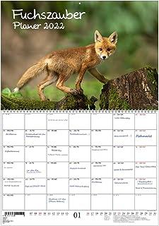 Fox Magic Planner Din A2 Utfälld - Kalender För 2022 Räv Och Rävar - Själens Magi