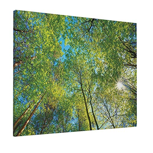 "Forest Home Decor Evergreen Back Nature Area Mother Earth Lime Trunk Mangrove Flora Willow Decor Greenpainting 16"" X 20"" Panoramic Canvas Wall Art"