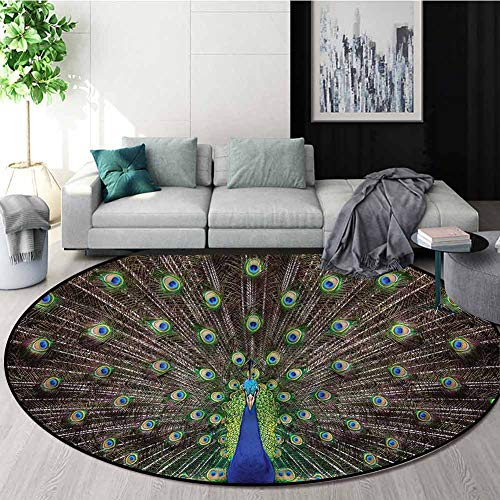 Buy Discount RUGSMAT Peacock Dining Room Home Bedroom Carpet Floor Mat,Feathers Enchanted Plumage No...