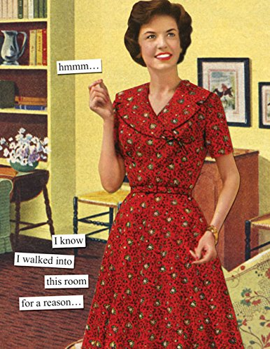 Anne Taintor Happy Birthday Greeting Card - I Walked Into This Room For a Reason