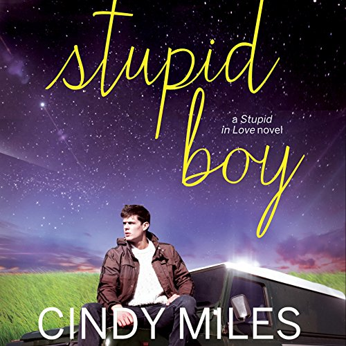 Stupid Boy cover art