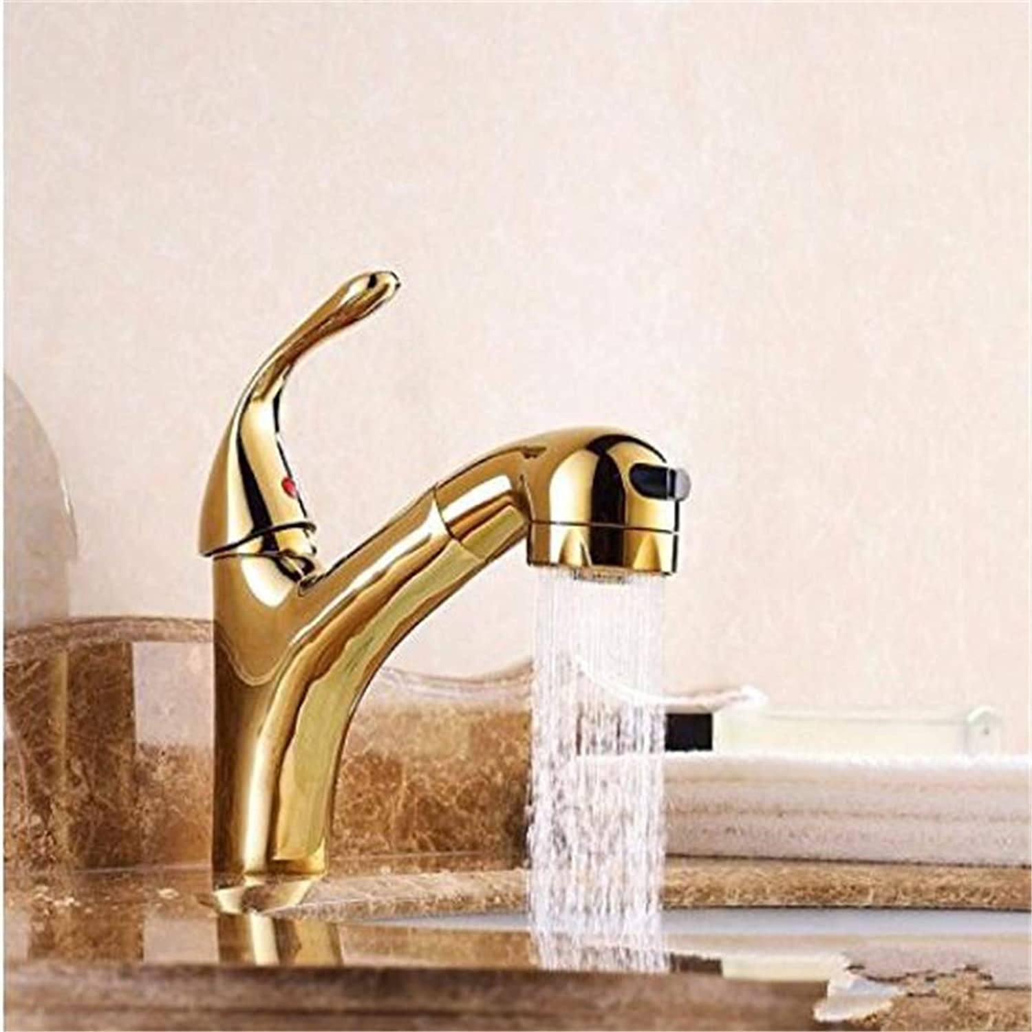 Faucet Luxury Modern Plated Faucet Mixercopper gold Cold Tropical Nozzle Stretch Double Pullable Washbasin Washbasin Faucet