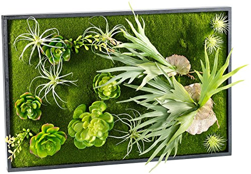 Carlo Milano Pflanzenbild: Vertikaler Wandgarten Knut mit Deko-Pflanzen, 60 x 40 cm (Wandbegrünung)