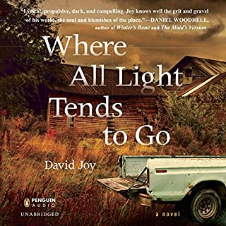 Where All Light Tends to Go cover art