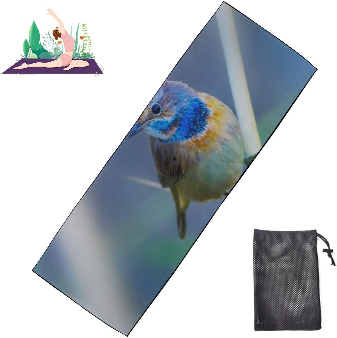quality assurance Zaqiwa Hot Yoga Attention brand Towel Men Brightly Mat Birds M Gym Coloured