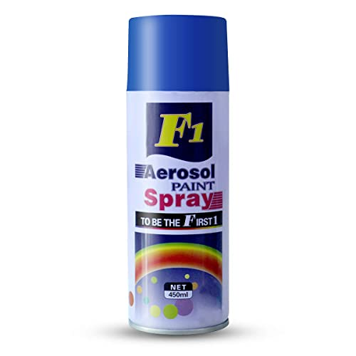 AllExtreme F1 Aerosol Multi-Purpose Gloss Spray Paint for Car, Bike, Cycle and Home,Silver,200 g