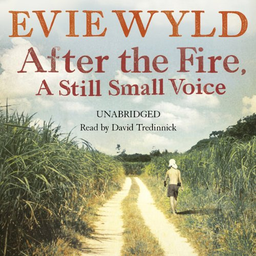 After the Fire, a Still Small Voice audiobook cover art