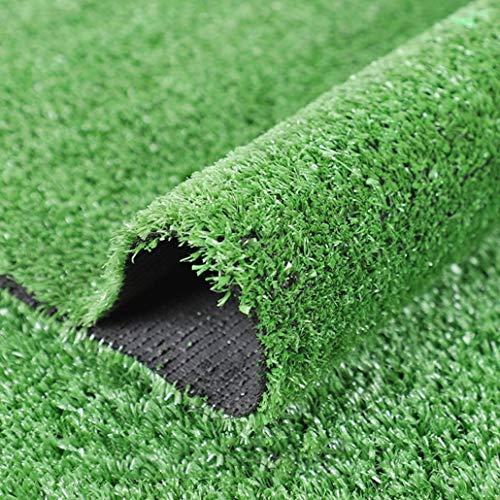 Realistische künstliche Rasen Terrasse, Gefälschte Turf for die Innen- und Außendekoration, Haustier Rasen Hundematte Porch Matte, Außendekoration und Anti-Rutsch-Turf ( Color : 10mm , Size : 1mX2m )