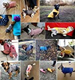 Zoom IMG-1 idepet impermeabile cappotto per cani