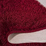 HUOQILIN Alfombra de salón supersuave, lujosa alfombra peluda para dormitorio, pasillo, cocina (rojo oscuro, 80 x 300 cm) XUAGMT, Rojo Natty, 80 x 300 cm