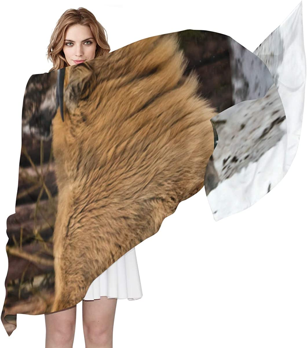 Takin, An Endangered Species Unique Fashion Scarf For Women Lightweight Fashion Fall Winter Print Scarves Shawl Wraps Gifts For Early Spring