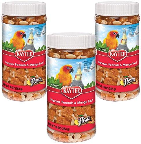 Kaytee Fiesta Papaya Peanut and Mango Treat for All Birds, 10-Ounce Jar (Pack of 3)