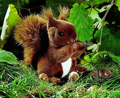 Kösener 3600 - Eichhörnchen, klein