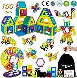 theefun Magnetische Bausteine, 100 Teile Magnetspielzeug Magnete Kinder Magnetbausteine Magnetic Bauklötze Baukasten Kinder Perfekt für den Einsatz zu Hause, in Schulen, Kindertagesstätten