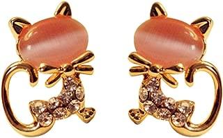 stick on stones earrings