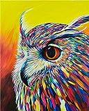 JWFJF Pintar por numeros Adultos Búho Animal de Color Pintura al óleo de Bricolaje Lienzo niños y Principiante Paint Pintura decoración del hogar Arte Regalo 40x50 cm(Sin Marco)