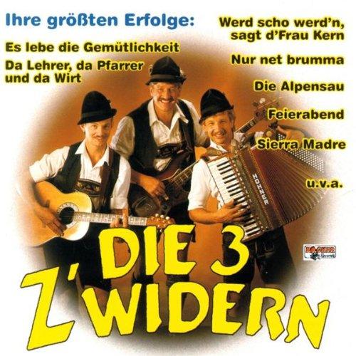 Schi-Lieder Potpourri (Da Winter Der Is Ma Net Z'Wida/Aber Mei Hans Der Kann's/Was Braucht Na Der Skifahrer No/Meine Schi Woll'N Net Immer Wie I)