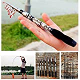 Dyna-Living Mini Fishing Rod Portable Compatible with Freshwater Saltwater Telescopic Lightweight for Kids Adults, 1m(3.28 ft)