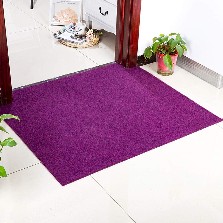 Carpet,Carpet for Door Stairs Balcony Front Door Anti-skidding Easy to Clean-Purple 120x180cm(47x71inch)