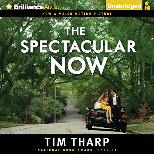 The Spectacular Now cover art
