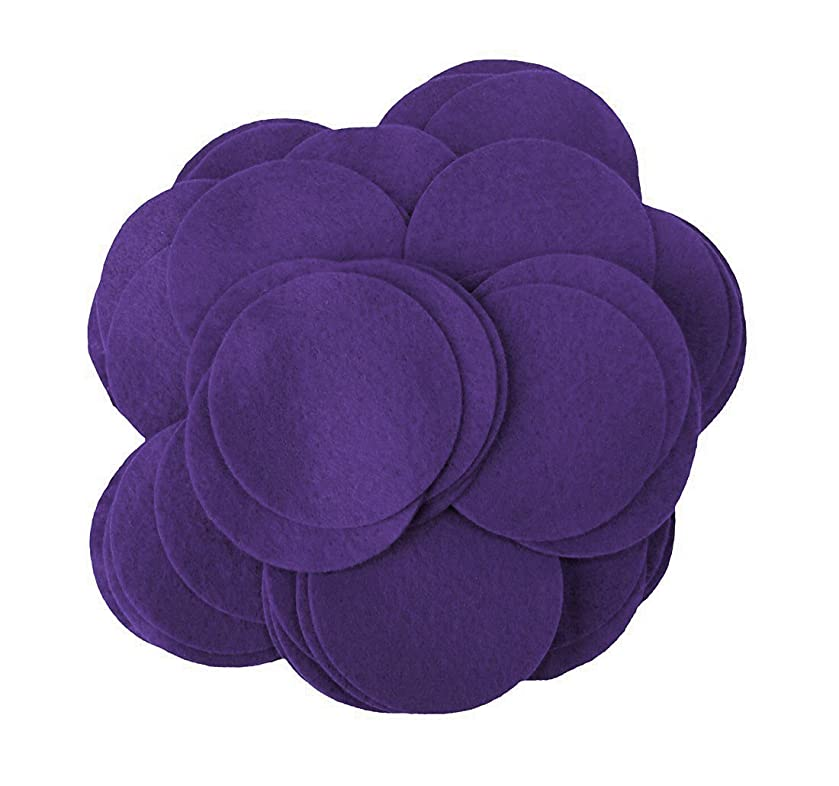 Playfully Ever After 3 Inch Dark Purple 30pc Felt Circles